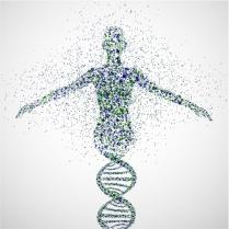 ANGI DNA Image
